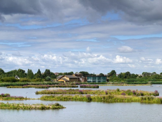 London Wetlands Centre