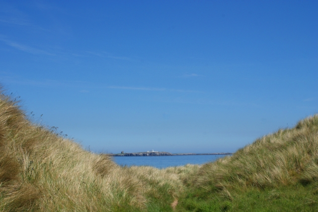 Bamburgh Beach and Farne Islands - image Zoe Dawes