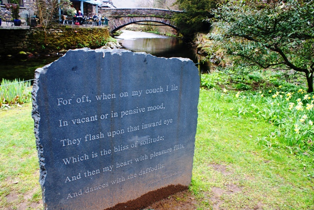 Daffodils by William Wordsworth at Grasmere Church - by Zoe Dawes