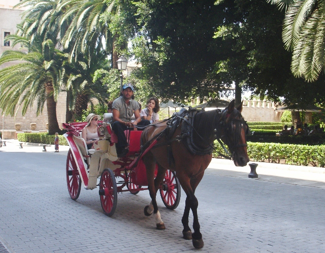 Horse &amp; carriage