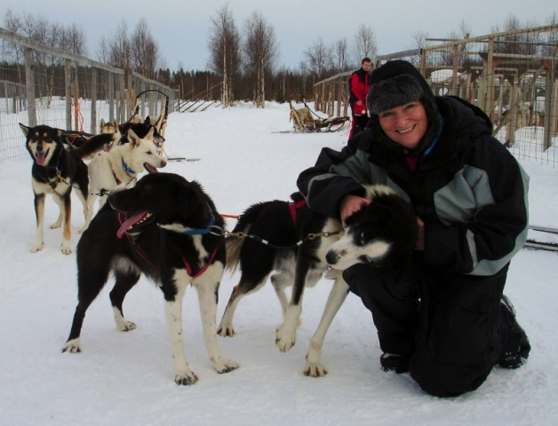 Hug a husky in Finland