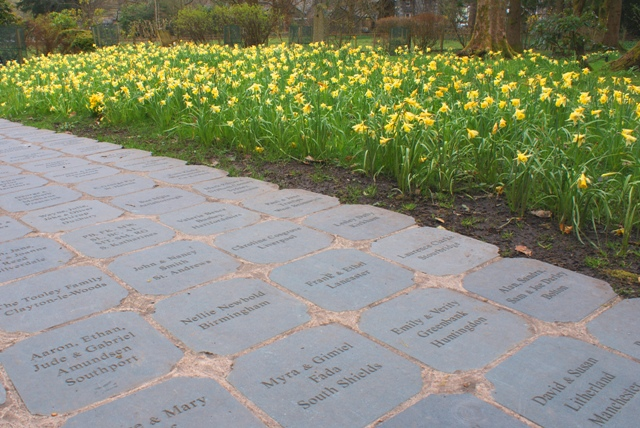 Wordsworth Daffodil Garden slates - by Zoe Dawes