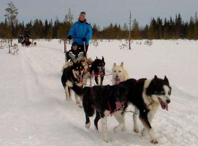 Zoe &amp; Gerralda Husky ride, Lapland, Finland