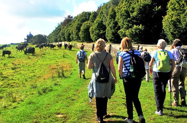 HF Walking Holiday Castle Howard