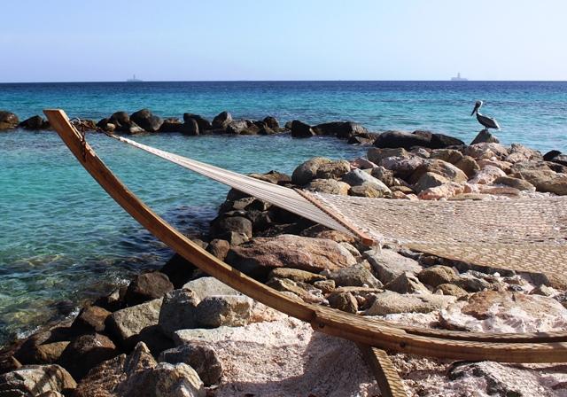 Hotel Renaissance Aruba Island pelican
