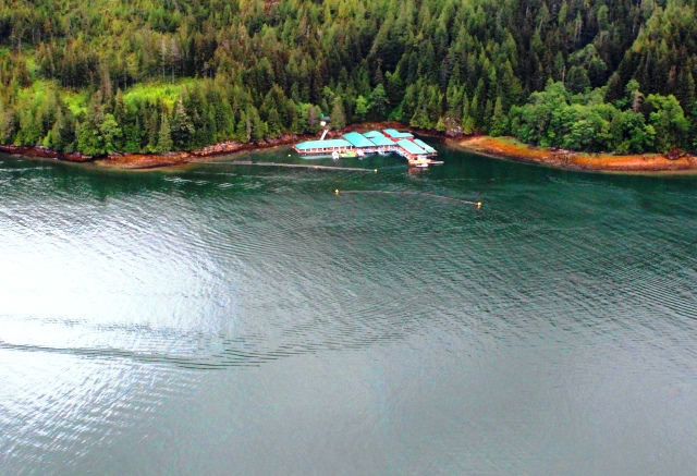 Aerial view Knight Inlet Lodge BC Canada - photo zoedawes