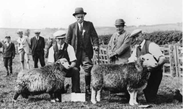 Beatrix Potter and Herdwick Sheep - photo hop-skip-jump.com