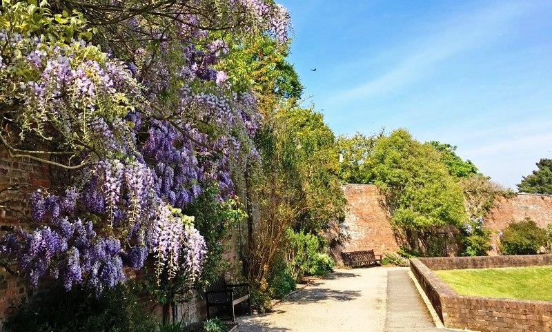 Bodelwyddan Castle Garden