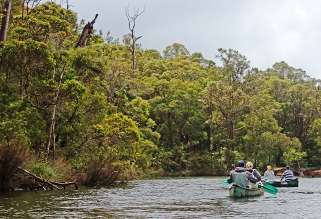 Canoeing on Margaret River Western Australia - photo zoedawes