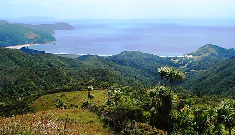 Waikawau Bay on Coromandel Peninsula North Island NZ