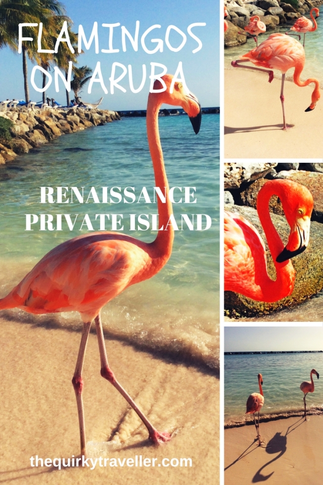 Flamingos on Renaissance Aruba Private Island