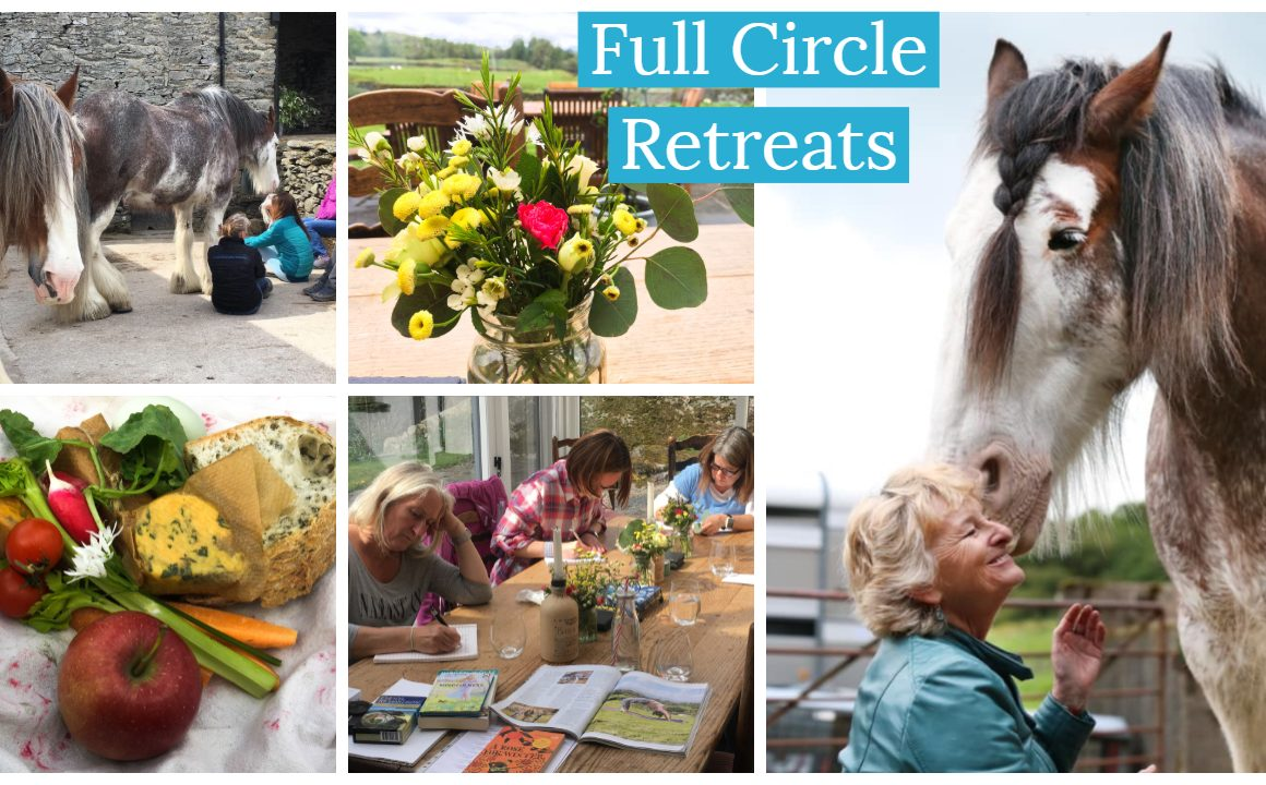 Full Circle Retreats - meditate with horse and creative writing in the Lake District