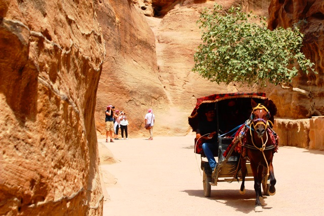 Horse-drawn carriage in the Siq Petra Jordan - photo zoedawes