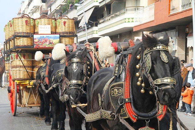 Horse-drawn-carriage-Fiesta-dels-tres-tombs