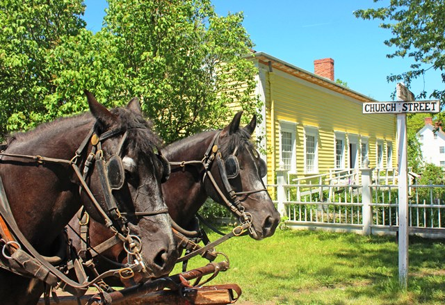Horses Upper Canada Village Ontario - photo Zoe Dawes