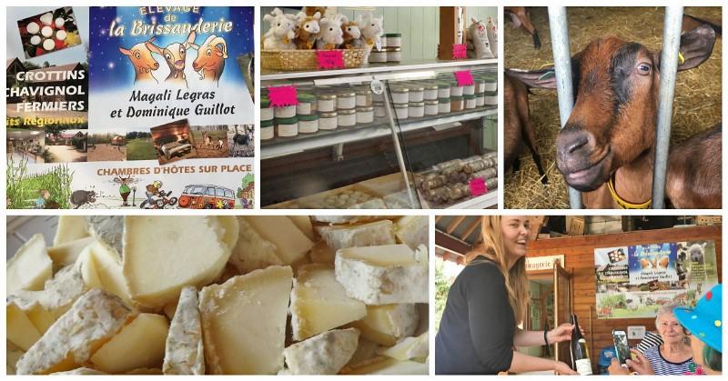 La Brissauderie Goat Farm Sancerre - collage Zoe Dawes
