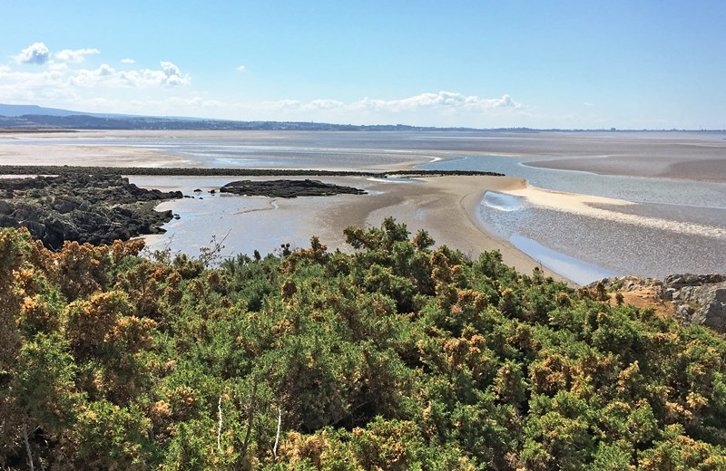 View from Jenny Brown's Point Morecambe Bay from Silverdale - photo Zoe Dawes