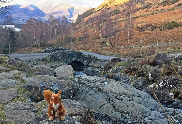 Oxley at Ashness Bridge near Keswick - photo Zoe Dawes