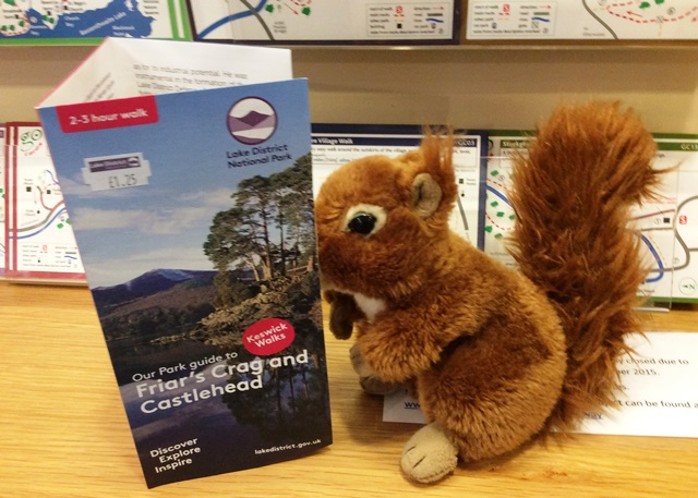 Oxley the Red Squirrel at Keswick Visitor Centre - image Zoe Dawes