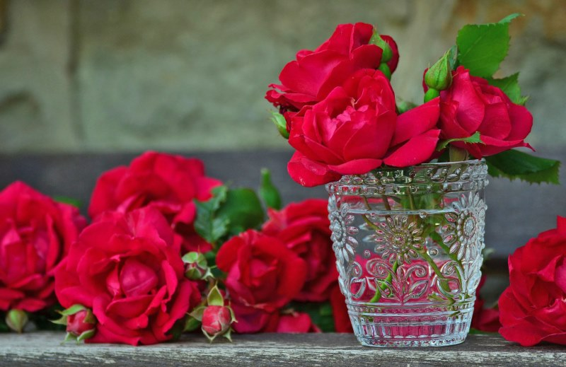 Deep pink roses in a jar