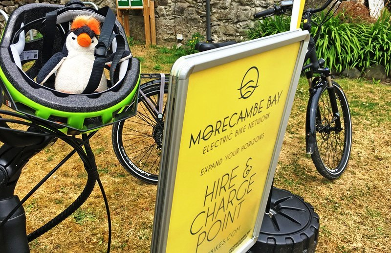 Quirky Penguin on electric bike