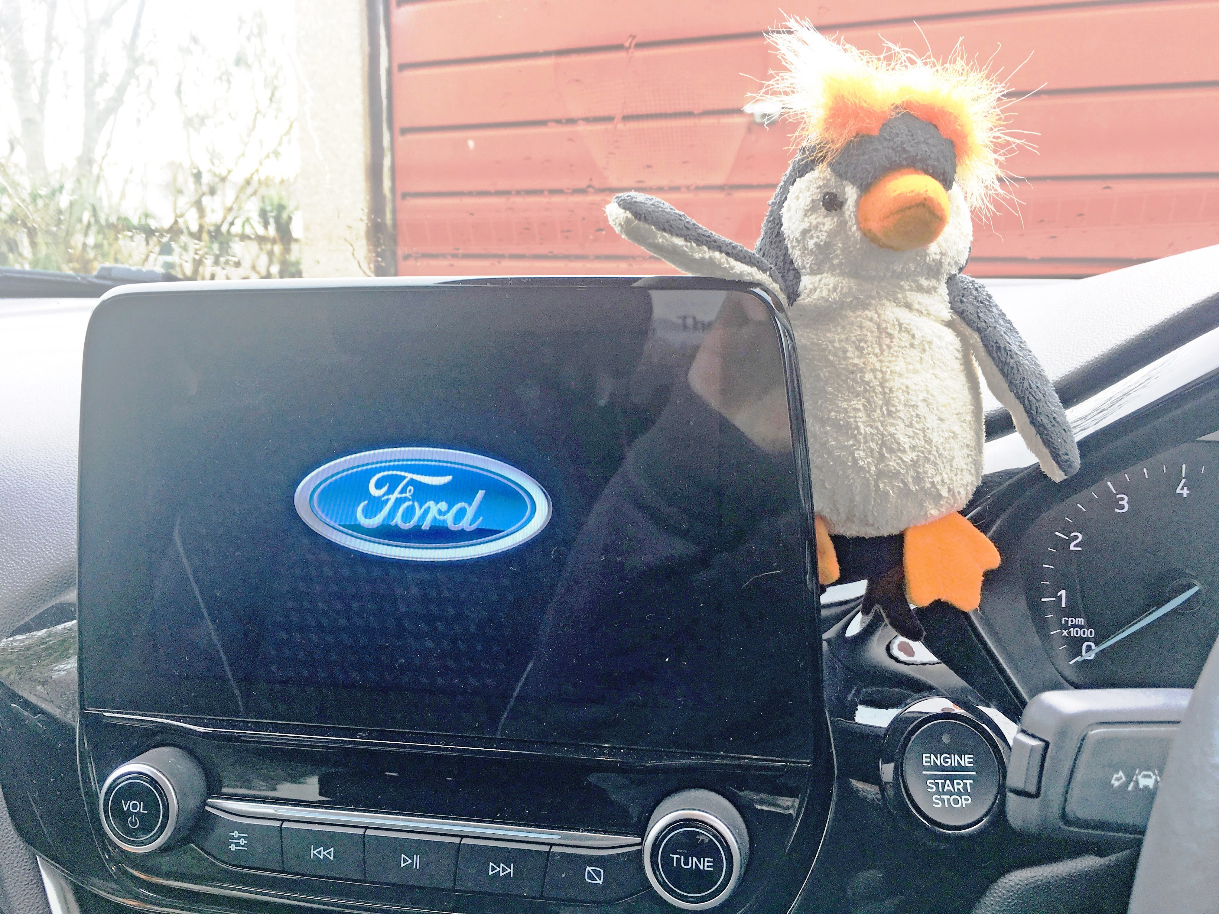 Quirky Penguin in Ford Fiesta
