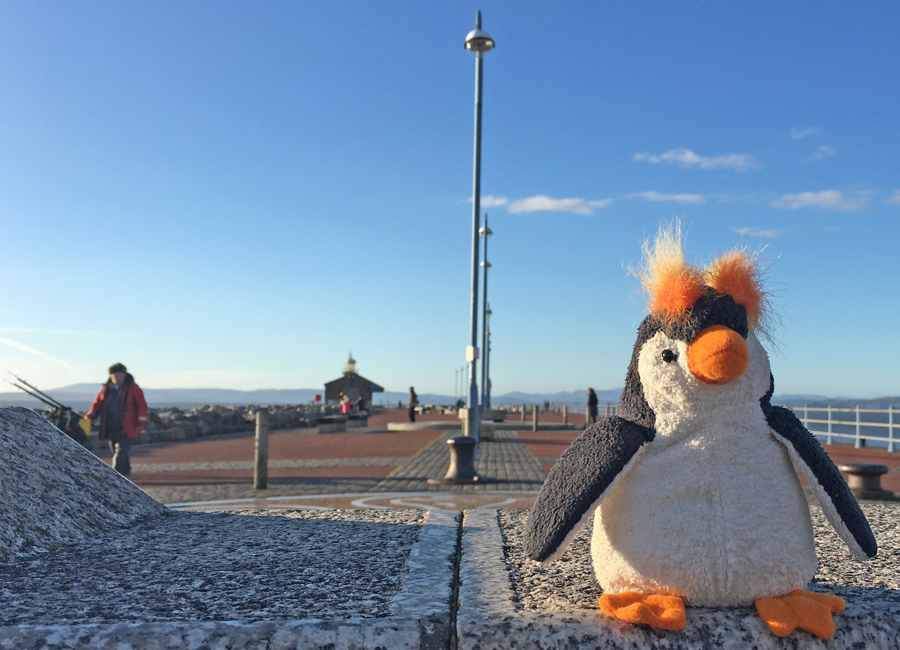 Quirky Penguin on Stone Jetty Morecambe - photo Zoe Dawes