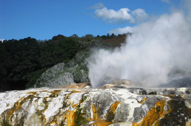 Rotorua Prince of Wales Feathers geyser New Zealand - image Valley2City