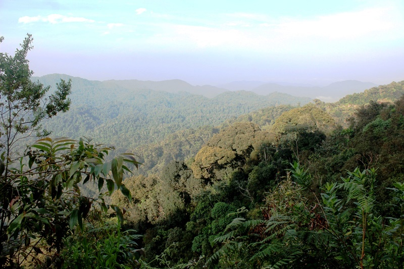 Rwanda Hills Africa - photo Zoe Dawes