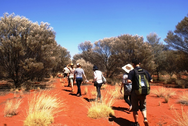 Bush Food Walk Australia