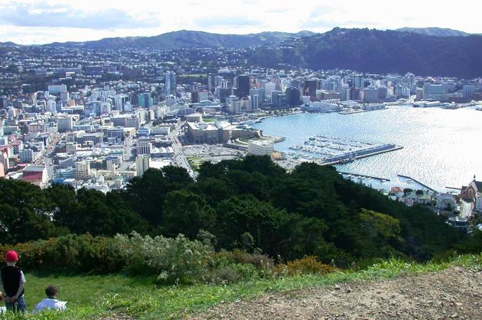 Wellington from the top of Mount Victoria - image PhiloVivero